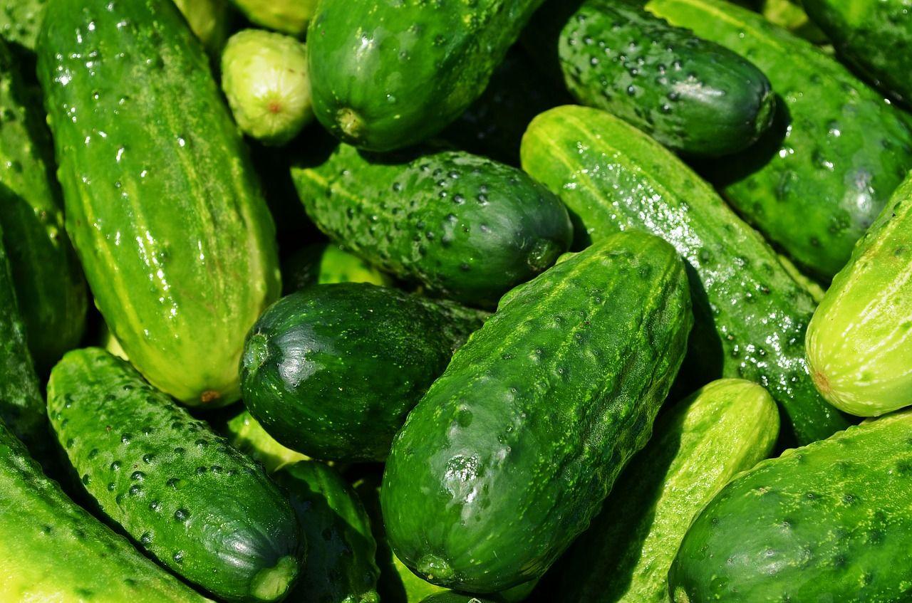 VERDURAS: Las 7 verduras que más adelgazan