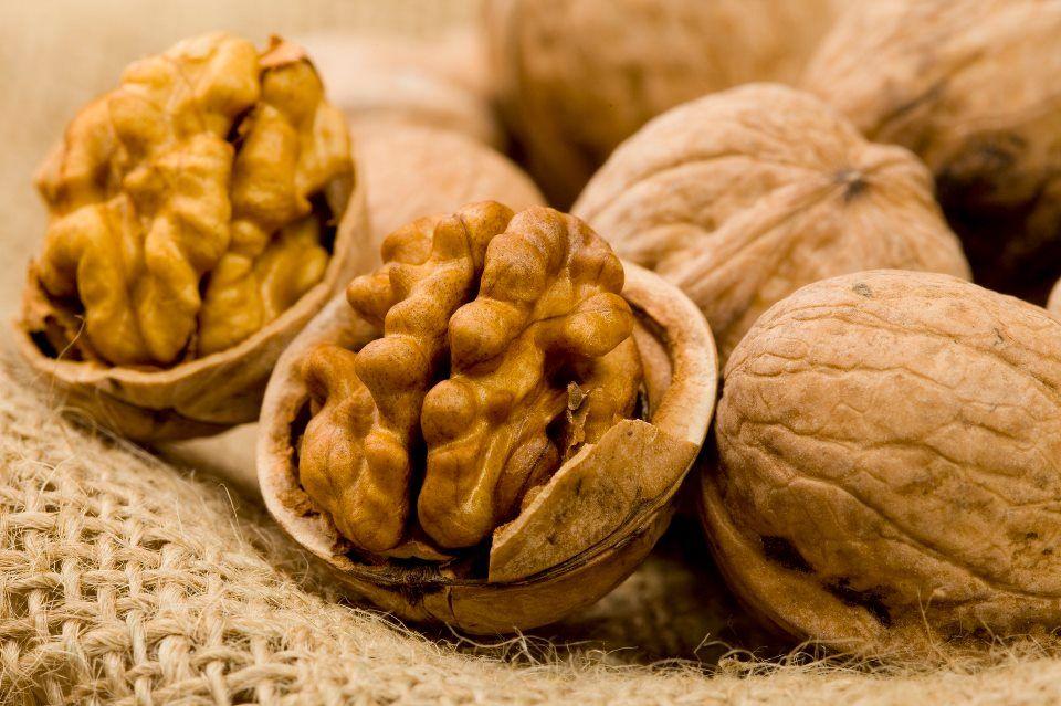Ácidos grasos: 4 Alimentos ricos en «omegas». [Muy beneficiosos para la salud]