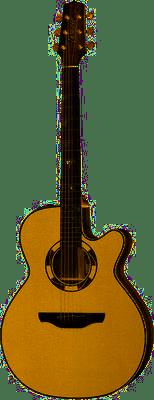 guitare électro-acoustique