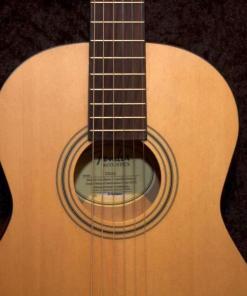Fender ESC 80