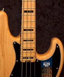 E-Bass im American Guitar Shop 5