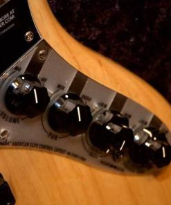 E-Bass im American Guitar Shop 6