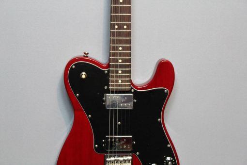 E-gitarren im American Guitar Shop 23