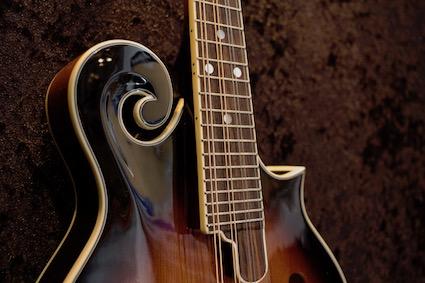 Mandolinen in Guitar Shop