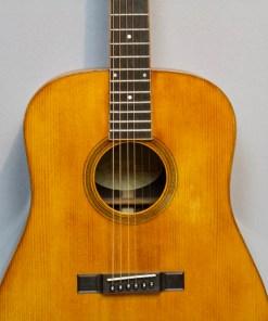 Larson Western Gitarre