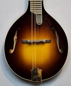 Kentucky KM-950 Master A-Mandoline 1920s Sunburst