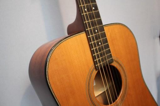 tanford Platinum D32 Westerngitarre1