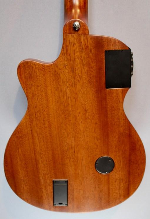 Shadow JM-CA 44 Westerngitarre2