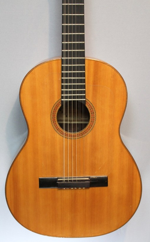 American Guitar Shop 12 String