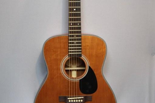 Shadow JMS-57 GANHGT Westerngitarre