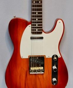 Berlin Custom Guitars Telley The Hel 2