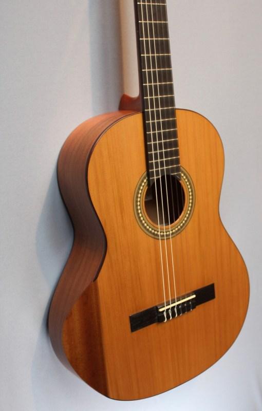 DEA Guitars INIZIO Cedar 1