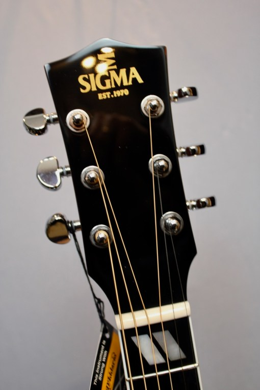 Sigma Guitars DM-SG5+ Folk Gitarre 1
