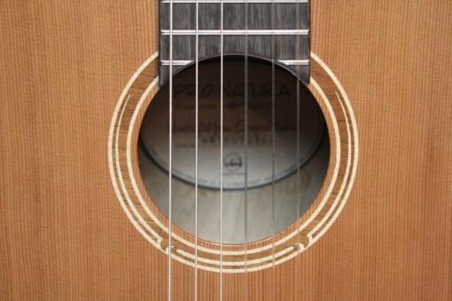 Pro Natura Bronze Siana 4/4 Konzertgitarre 1