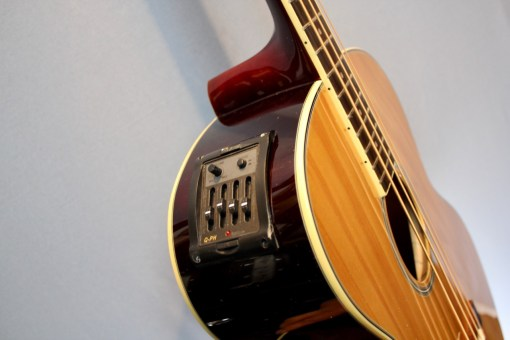 Richwood RB 60 E Akustikbass 1