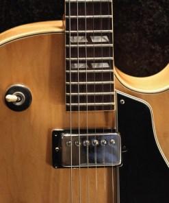 Gibson ES 175-1977 Berlin