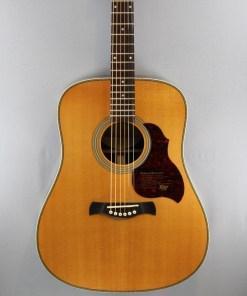Richwood D65 VA Westerngitarre 4