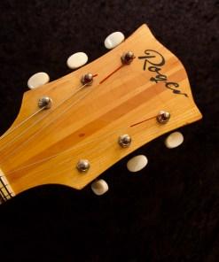 Roger Jazzgitarre 2