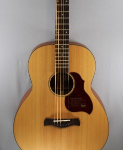 Richwood B-20 Baritone Gitarre 4