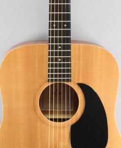 Sigma Guitars DM+