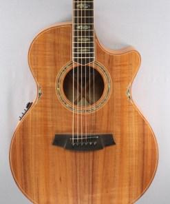 Cole Clark CCAN3EC-BLBL Westerngitarre 6