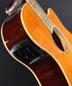 Yamaha APX 600 FM Amber