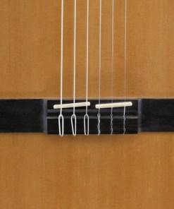DG-560 Nylon String
