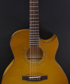 Lakewood J-50 Custom Folkgitarre