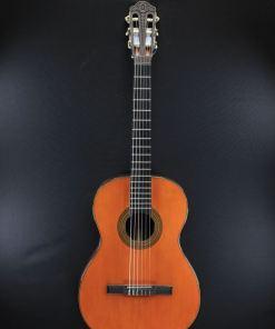Gitarre mit Nylon Saiten