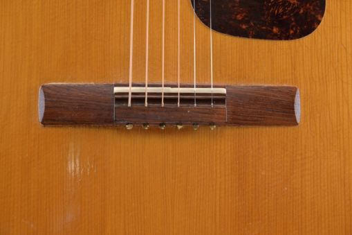 Model 119 Folkgitarre