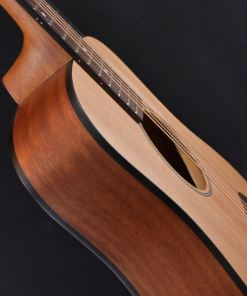 Richwood T-20 Traveller Guitar 2