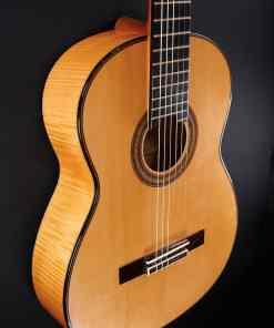 Schnabel Meistergitarre