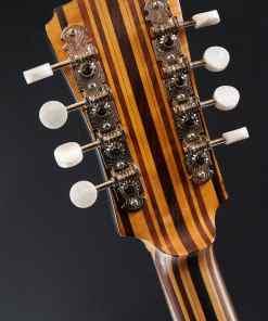 Berlin Custom Guitars Fretless