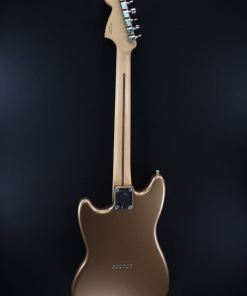 Fender Guitars Berlin