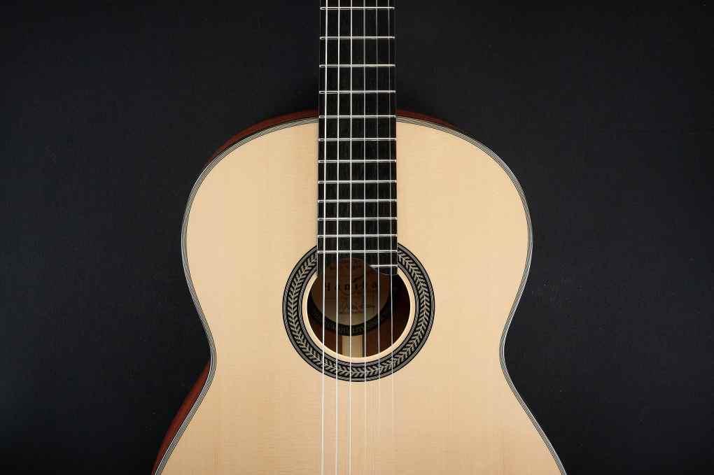 Hanika Vegan Gitarre