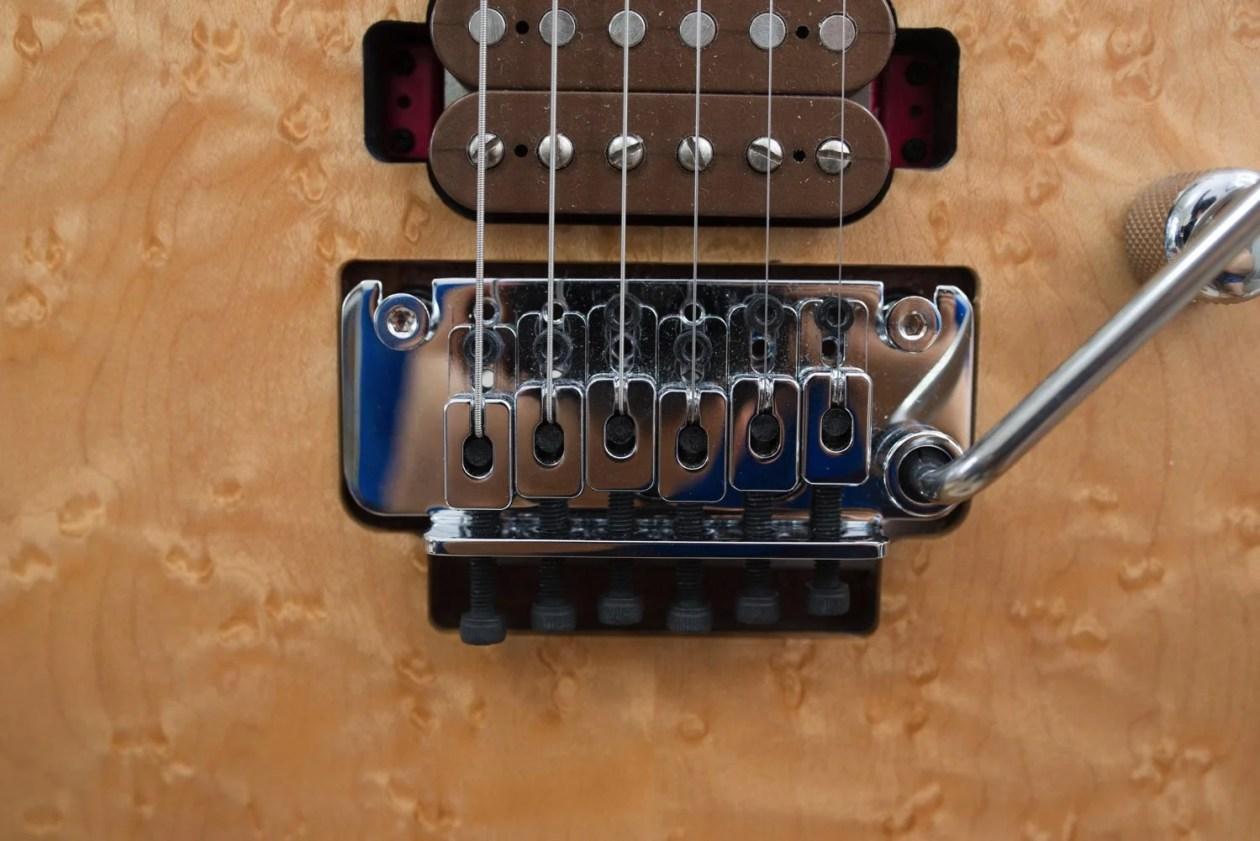 Th シャーベルギター「ガスリーゴーヴァンモデル」 DSC 3769