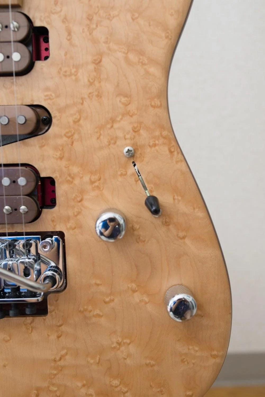 Th シャーベルギター「ガスリーゴーヴァンモデル」 DSC 3770