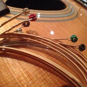 Martin-Daddario-strings-(17)
