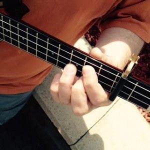Shubb ukulele capo