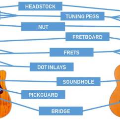 Guitar Parts Diagram Rj11 To Rj45 Pinout Of The Diagrams For Acoustic And Electric Guitars