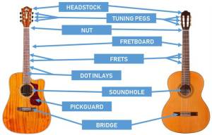 Parts of the Guitar: Diagrams for Acoustic and Electric