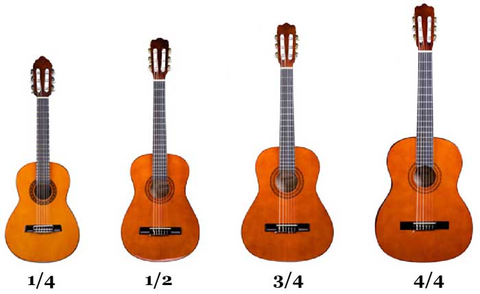 Need To Know The Parts Of The Acoustic Guitar