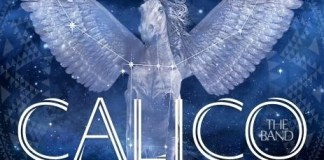 Calico Under Blue Skies
