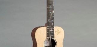 Martin Guitars Ed Sheeran Signature Guitar
