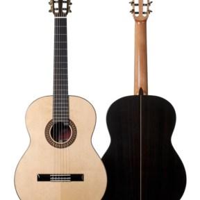 Guitarra flamenca Martinez MFG-RSGuitarra flamenca Martinez MFG-RSGuitarra flamenca Martinez MFG-RS