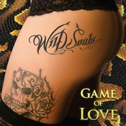 wild_souls_folder