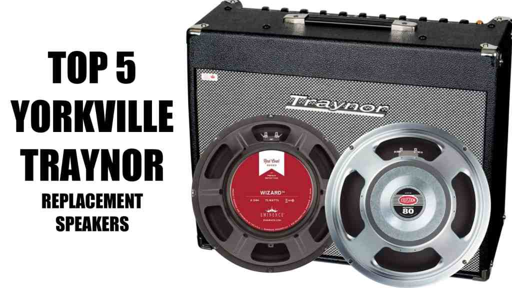 The 5 Best Yorkville Traynor Replacement Speakers
