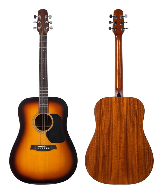 Dreadnought Guitar