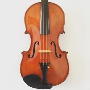 Fine Italian viola by Giulio Degani