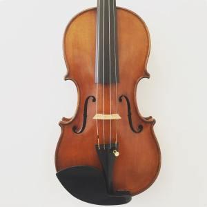 Italian violin by Giulio & Eugenio Degani